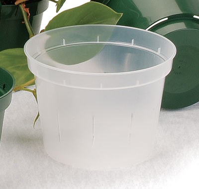 Clear Plastic Orchid Pot 6 In