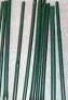 Stakes Bamboo Green. 24 in. 25 pack.